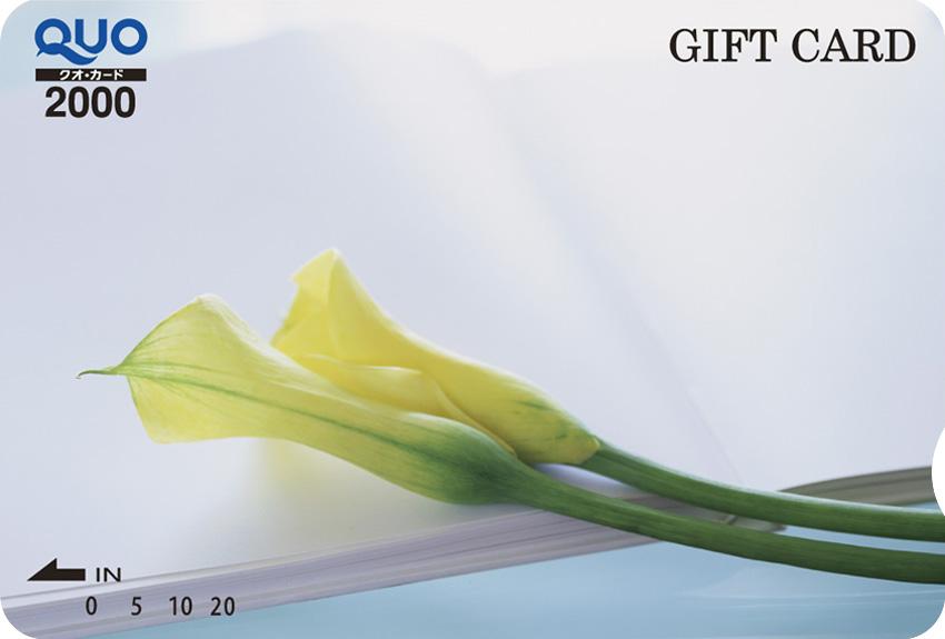 黄色いカラー (ST020005)