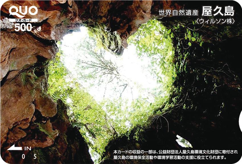 鹿児島県 屋久島  (ST005144)